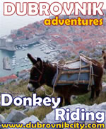 Dubrovnik Adventures: Donkey Riding