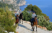 Dubrovnik horseback riding